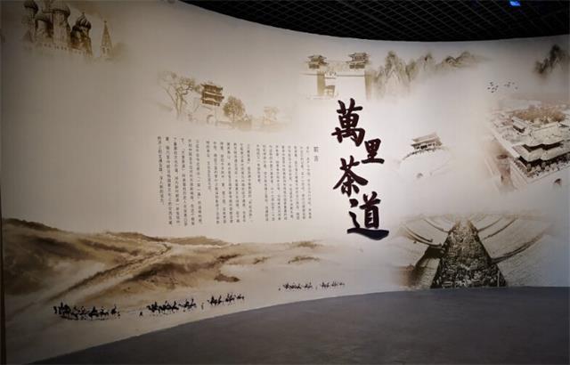 """""""万里茶道""""展亮相河北博物院"""