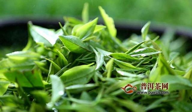 坦洋工夫茶叶属于什么茶