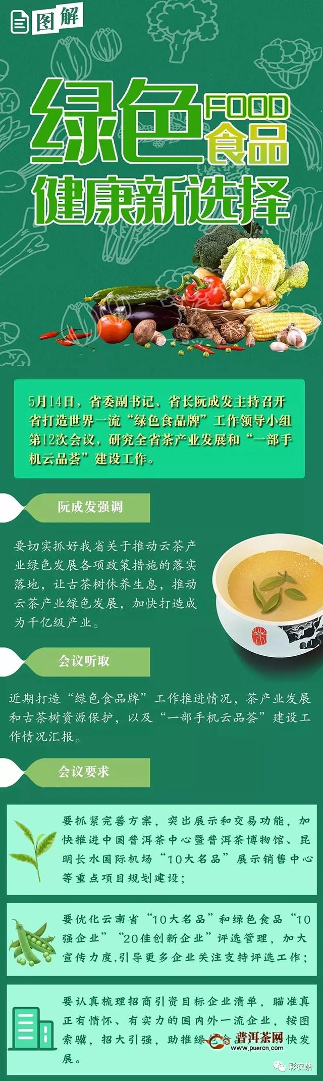阮成发:让古茶树休养生息推动云茶产业绿色发展