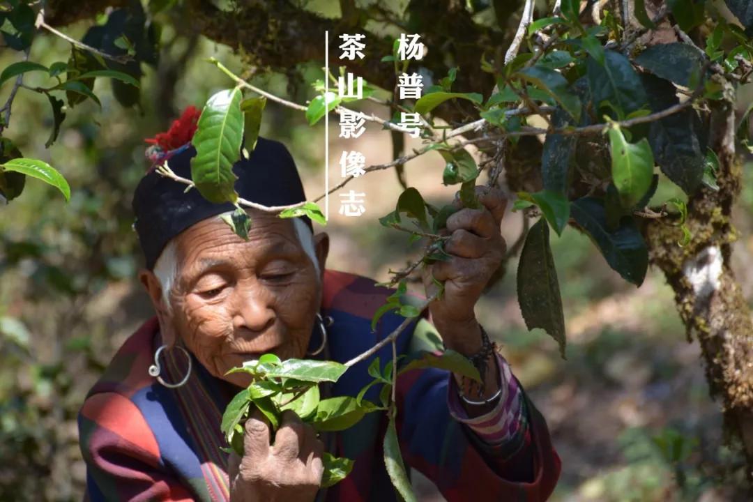 茶山影像志(一):拉祜人剪影四帧