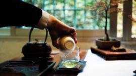 【茶话短说】谈论什么是好的普洱茶,大概也只能分类来谈