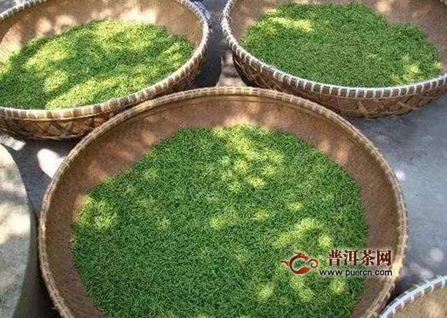 松阳香茶产自哪里?松阳香茶地理位置