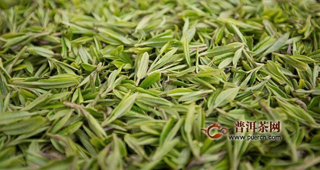 早上喝绿茶减肥?切勿早上绿茶喝空腹减肥塑身带正确用法图片
