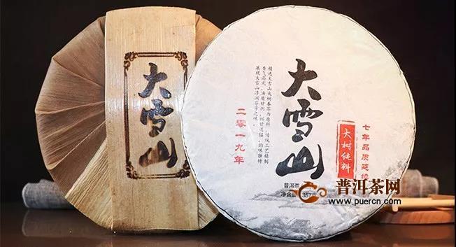 2019年大雪山老树纯料评测