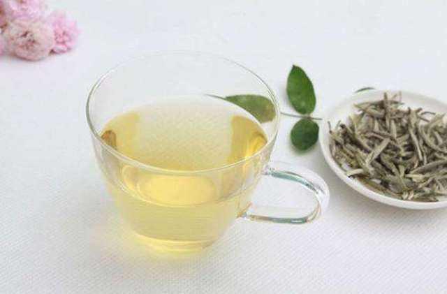 泡白茶,有哪些实用的规律?