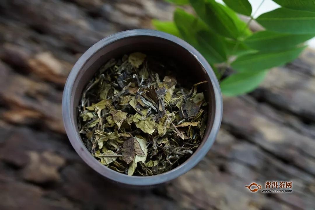 月经期间能喝福鼎白茶,哪些人不适合喝白茶