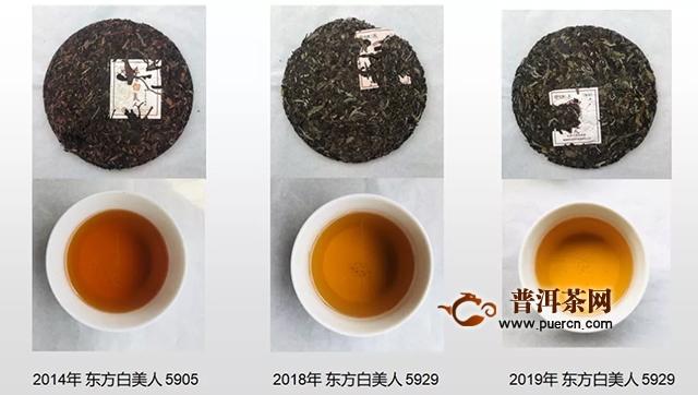 """2019中茶蝴蝶东方白美人,""""美人""""之美,宜品宜赏"""