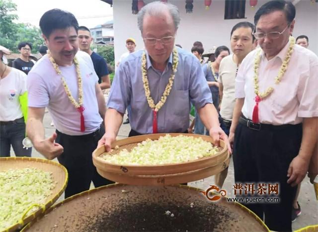 遇见福州 茉莉飘香,第二届福州茉莉花开采文化节圆满举行