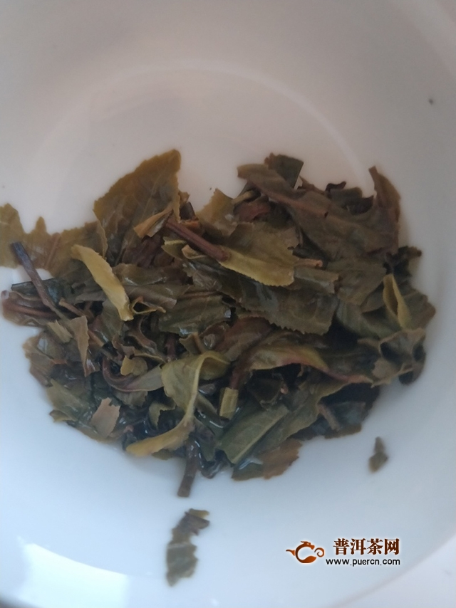2016年大雪山老树纯料茶春茶试用评测报告