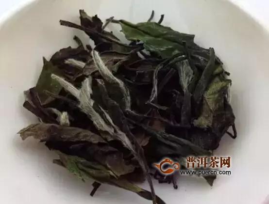 福鼎白茶最贵多少钱?简述福鼎白茶最佳品牌