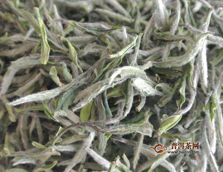 福鼎白茶转化过程,取决于哪些因素
