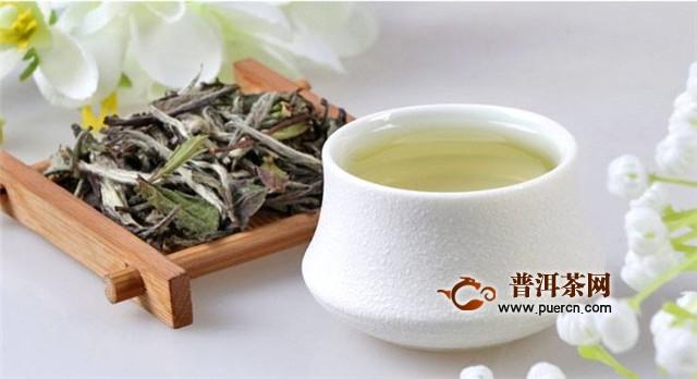 安吉白茶和白茶的区别,主要有4方面的不同!