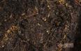 气血虚能喝黑茶吗?喝黑茶有哪些好处?