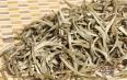 老白茶如何保存方法?教您如何正确保存白茶