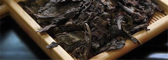 安化黑茶的毛茶是怎么制作的?