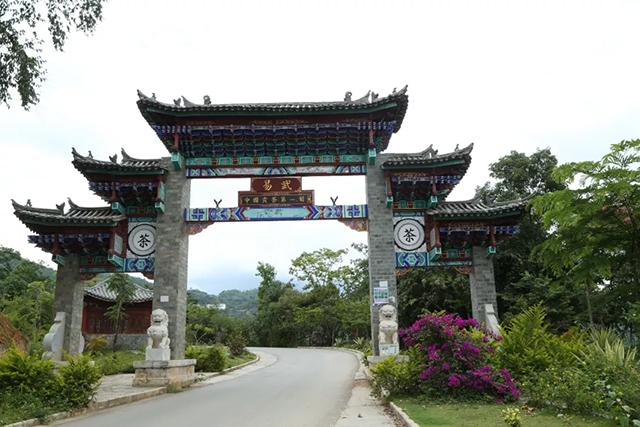 易武传奇,历史长河中的普洱茶故乡