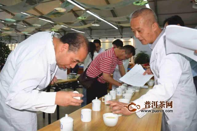 """64家茶企在2019""""贵州绿茶杯""""斗茶大赛上一决高下!"""