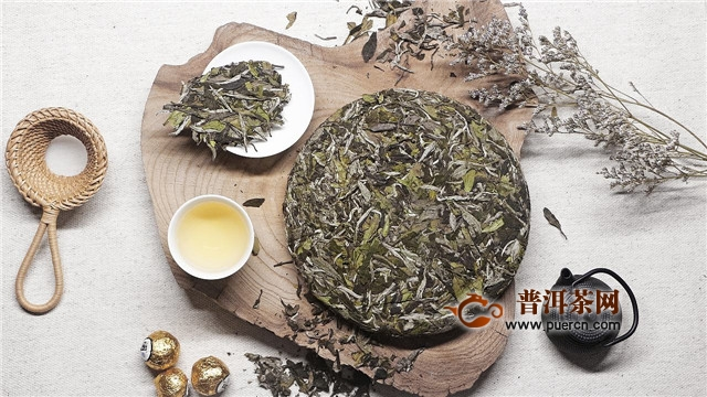 大白茶属于什么茶