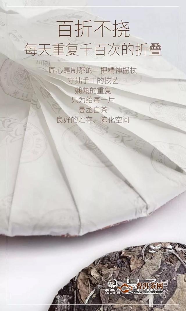 云元谷曼丞古树白茶鉴藏