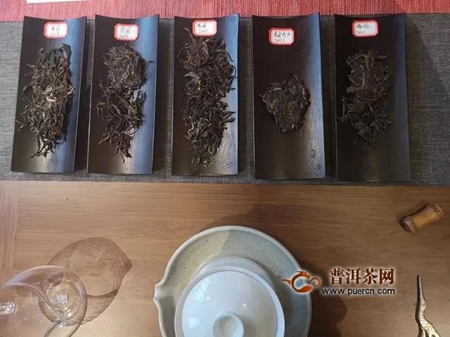 15年观察,5个时期,岁月知味茶会带你解开易武茶转化的摩斯密码!