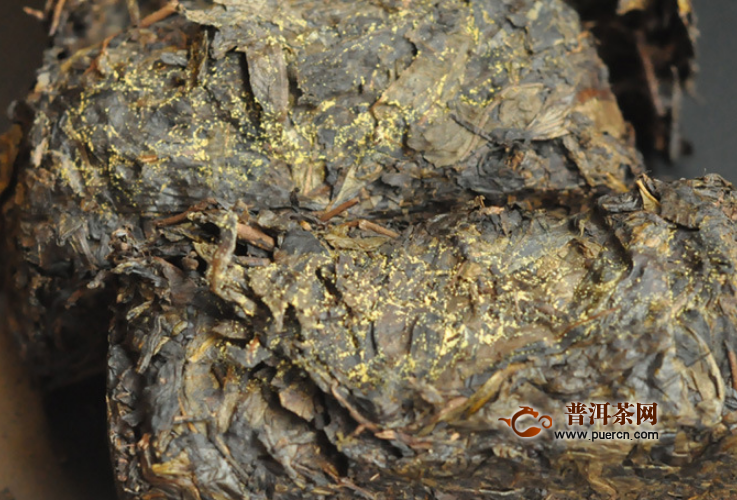 黑茶金花有什么功效,黑茶金花——品质的象征!