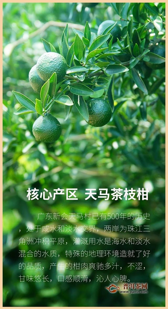 2019年云元谷新品小青柑