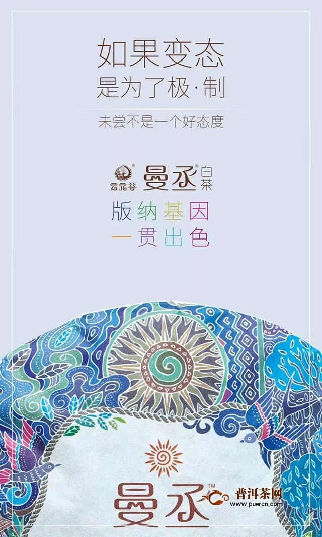 云元谷曼丞·白茶 版纳基因 一贯出色