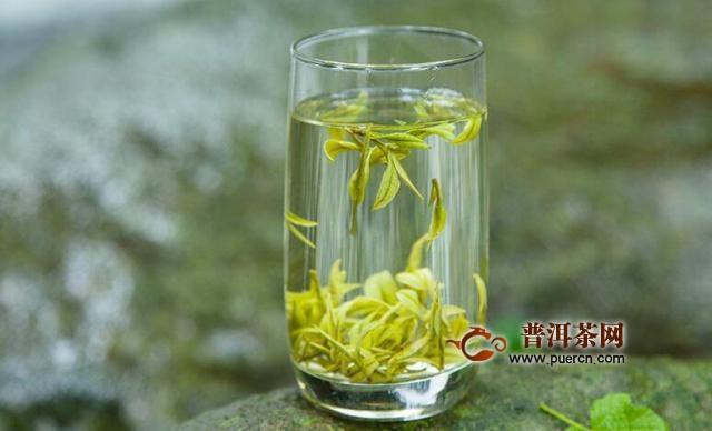 安吉白茶黄金芽多少钱一斤