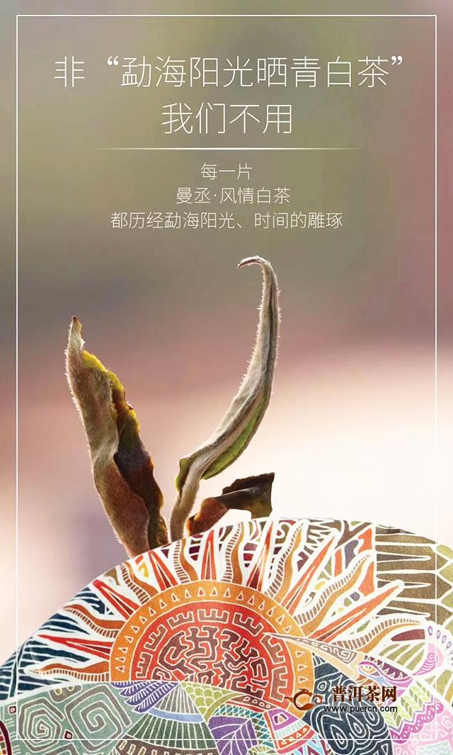 云元谷曼丞白茶  更卓越  更超凡