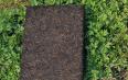 老茯茶的功效和作用,老茯茶——茶叶中的精品