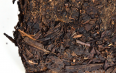 益阳茯砖茶是黑茶?益阳茯砖茶——黑茶!