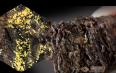 安化黑茶金茯是解决什么的,安化黑茶金茯养生保健!