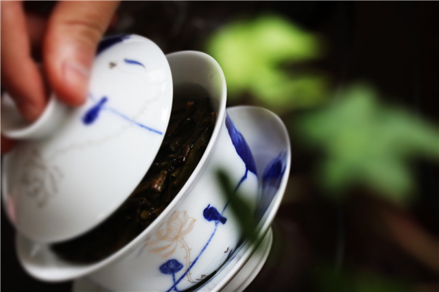 关于普洱茶,你所不知道的事