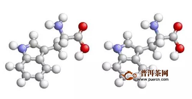 大益访谈徐平,蛋白质组学可对普洱茶功效进行科学阐释