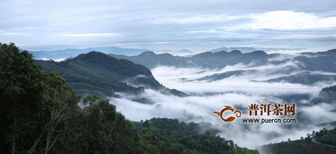 古六大普洱茶山是哪六山