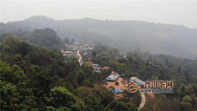 普洱茶产地之六大茶山