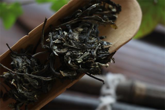 普洱茶的冲泡技巧该怎么操作呢?