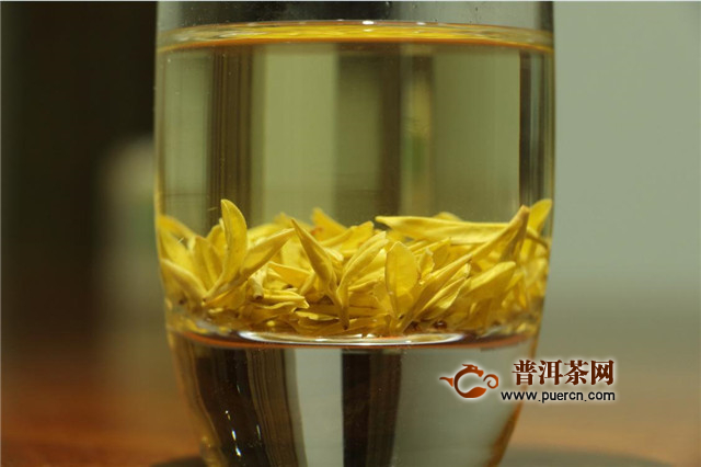 霍山黄芽属于黄茶吗?
