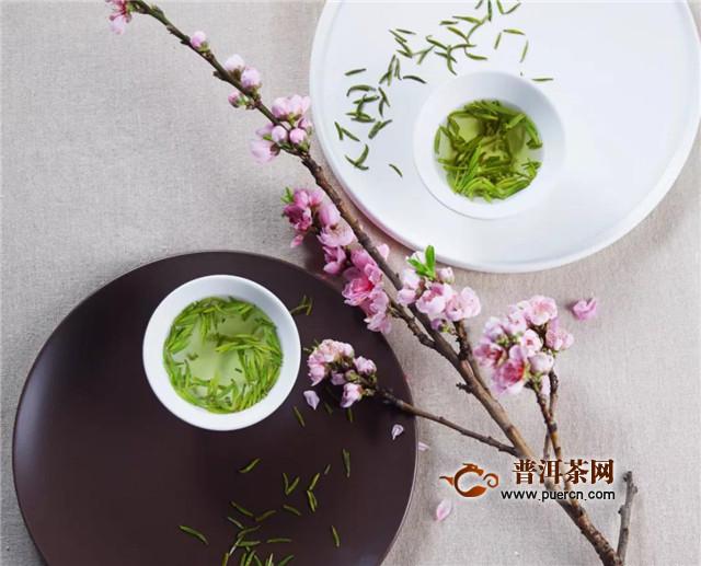 竹叶青的特征,色,香,味,形俱佳!图片