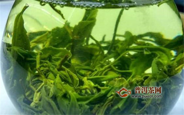 六安瓜片茶是红茶还是绿茶