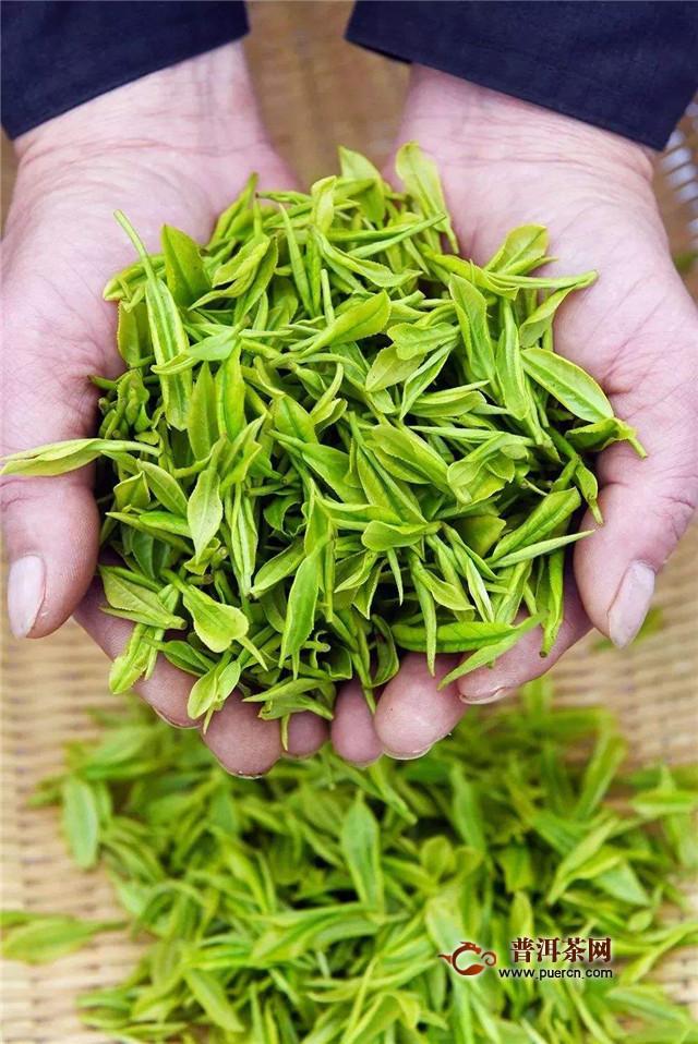 碧螺春和绿茶的产地不同
