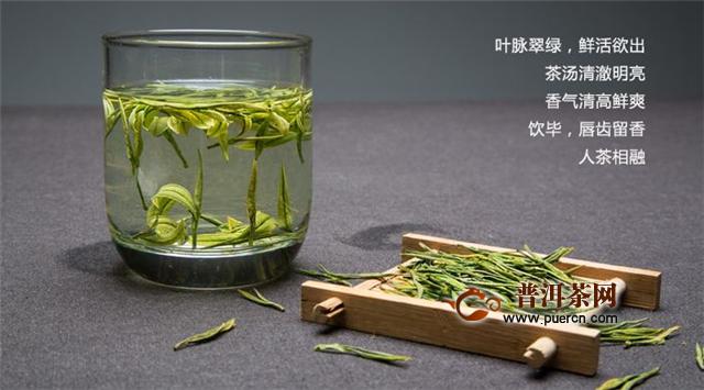 安吉白茶冲泡