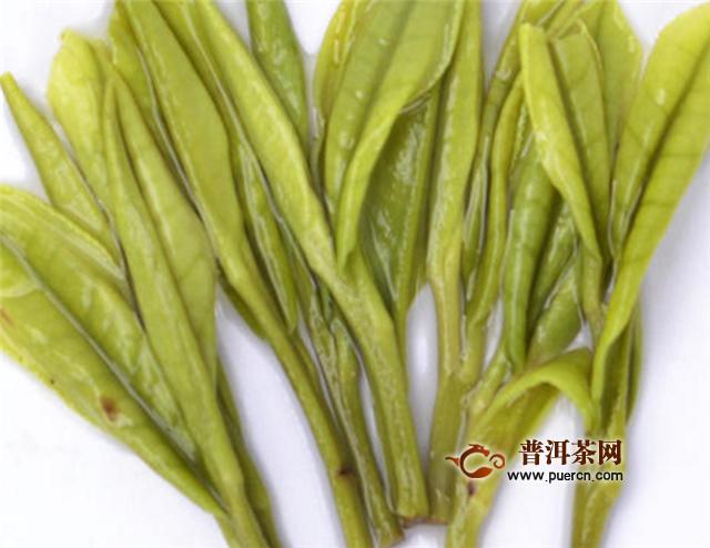 安吉白茶是浙江十大名茶吗?