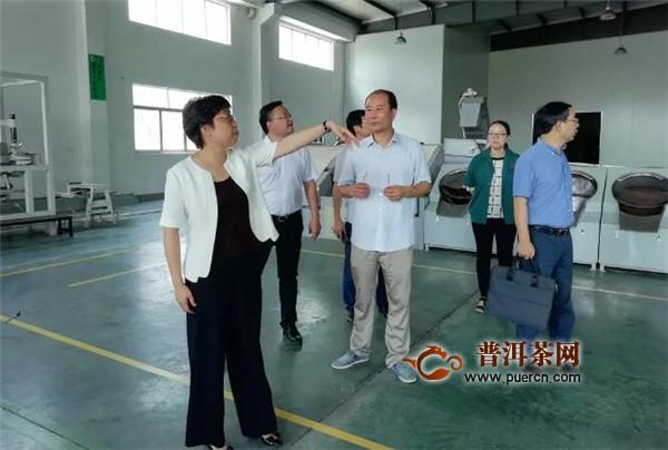 立博体育-黄旭荣县长调研新昌茶产业
