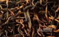 金骏眉和正山小种属于什么茶