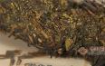 安化黑茶怎么喝才健康?黑茶避开禁忌喝才健康!