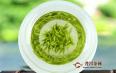 孕妇能喝绿茶吗?喝之前向医生咨询!