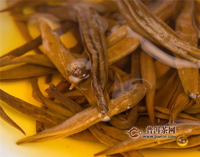 古树滇红属于红茶吗