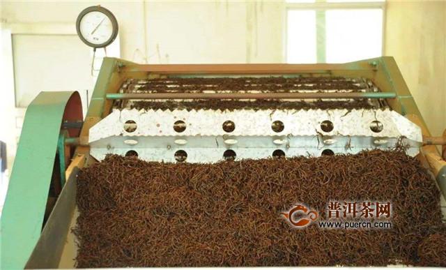 红茶加工工序