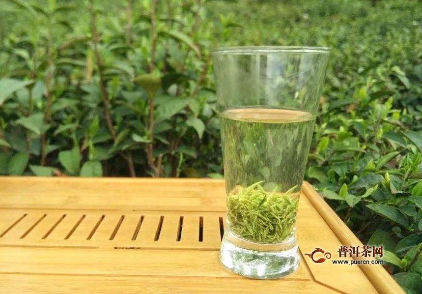 喝绿茶毛尖有什么好处?毛尖绿茶的特征